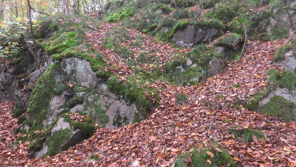 Efterår på Bornholm